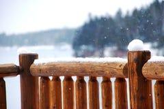 Registri la neve della riunione dell'inferriata un giorno di inverno freddo fotografie stock libere da diritti
