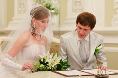 Registro de la boda de la muestra de los pares Imagen de archivo