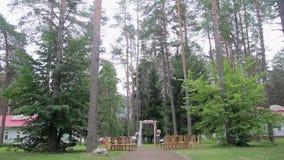 Registro de la boda de la salida en el fondo del bosque almacen de video