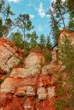 Registro de la cucaracha de la roca del yeso del macizo del karst, región de Arkhangelsk, hermosa vista de la reserva de Pinezhsk imagen de archivo libre de regalías