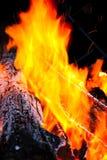 Registro de madeira que queima-se com as flamas do incêndio Fotos de Stock