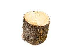 Registro de madera aislado imagen de archivo