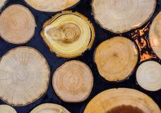 Registro de madera cortado en pedazos finos redondos Imagen de archivo