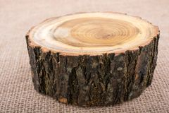 Registro de madera cortado en pedazos finos redondos Fotografía de archivo libre de regalías