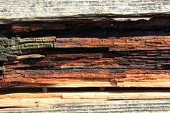 Registro de madera del color Foto de archivo