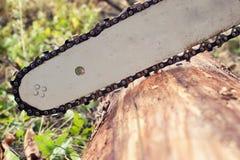 Registro del corte de la cuchilla de la motosierra de la madera Imagen de archivo