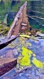 Registro del lago hanging Imagenes de archivo