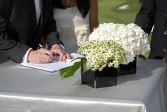 Registro do casamento Imagens de Stock