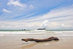 Registro en la playa Foto de archivo libre de regalías