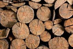 Registro marrón de madera Imagenes de archivo