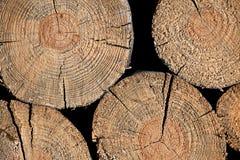 Registro marrón de madera Fotos de archivo libres de regalías