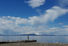 Registro solo, lago Yellowstone, Wyoming Imagenes de archivo