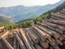 Registros apilados de la madera con el fondo de montañas y del bosque Imágenes de archivo libres de regalías