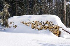 Registros bajo la nieve Imagenes de archivo