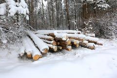 Registros bajo nieve Fotografía de archivo