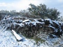Registros cubiertos con nieve en el campo Fotos de archivo