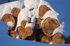 Registros cubiertos en nieve Imagenes de archivo
