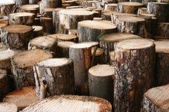 Registros da madeira Imagens de Stock Royalty Free