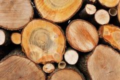 Registros de la madera Imágenes de archivo libres de regalías