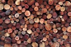 Registros de la madera apilados Fotos de archivo
