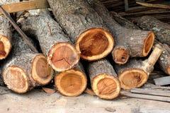 Registros de la madera del fuego Foto de archivo libre de regalías