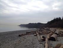 Registros de la playa Imagenes de archivo