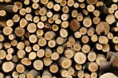 Registros de madeira Imagem de Stock Royalty Free