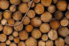 Registros de madeira Imagens de Stock Royalty Free