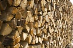 Registros de madeira empilhados Imagem de Stock