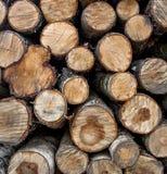 Registros de madera Imagen de archivo