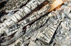 Registros de madera ardientes Imagenes de archivo