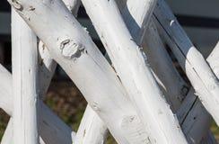 Registros de madera blancos fotos de archivo libres de regalías