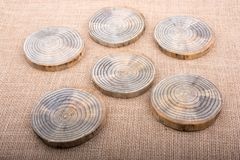 Registros de madera cortados en pedazos finos redondos Foto de archivo libre de regalías