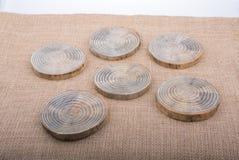Registros de madera cortados en pedazos finos redondos Fotografía de archivo