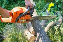 Registros de madera cortados motosierra Foto de archivo