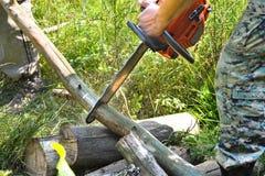 Registros de madera cortados motosierra Imagen de archivo libre de regalías