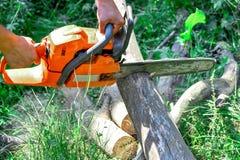 Registros de madera cortados motosierra Foto de archivo libre de regalías