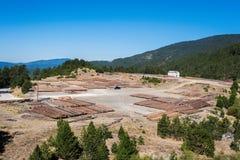 Registros de madera del bosque de pino en el bosque, apilados en pilas Apertura de sesión del parque nacional de montañas de Pind Fotos de archivo
