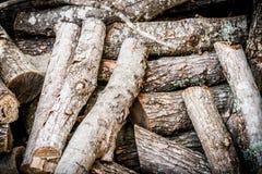 Registros de madera del fuego imágenes de archivo libres de regalías