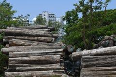 Registros de madera de la tala de árboles, de la teca y el edificio en fondo Fotos de archivo libres de regalías