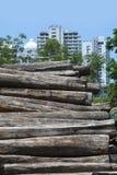 Registros de madera de la tala de árboles, de la teca y el edificio en fondo Imagenes de archivo
