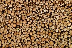 Registros de madera llenados fotografía de archivo libre de regalías