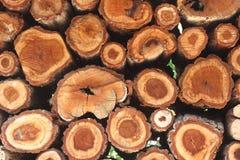 Registros de madera naturales fondo, visión superior Imagen de archivo