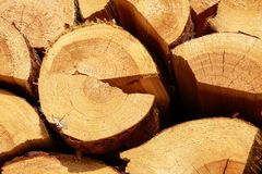 Registros de madera para la chimenea fotos de archivo libres de regalías