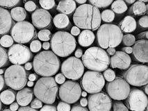 Registros de madera redonda Imagen de archivo