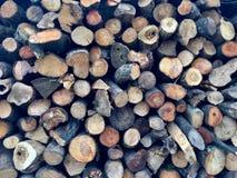 Registros de madera sazonados apilados del registro Foto de archivo