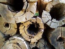 Registros de madera tajados Foto de archivo libre de regalías