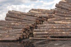 Registros en el molino de la madera de construcción Fotos de archivo