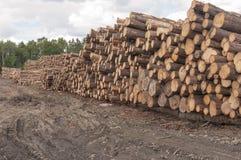 Registros en el molino de la madera de construcción Imagenes de archivo
