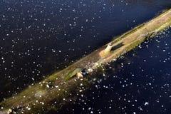 Registros grandes debajo del hielo grueso Fotografía de archivo